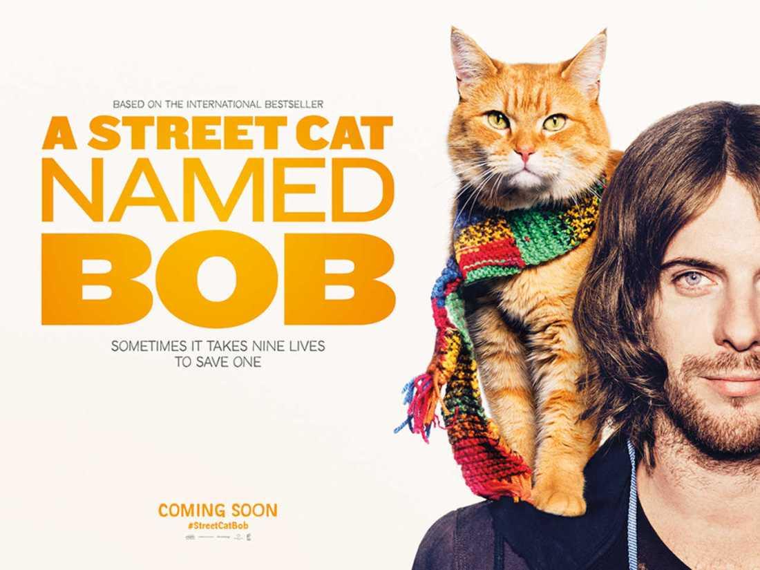 A Street Cat Named Bob Film Poster